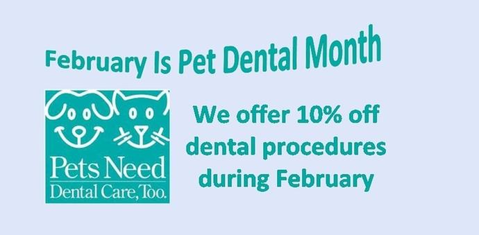 Dental month discount