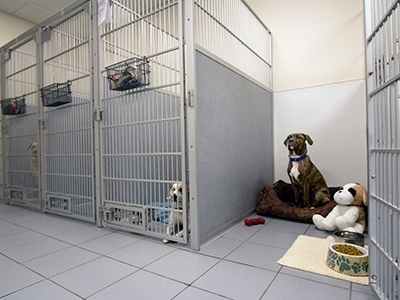 Dog Room, Kennel