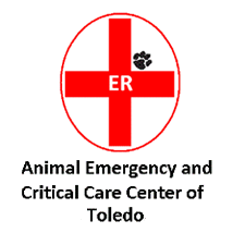 Toledo Emergency Clinic Logo