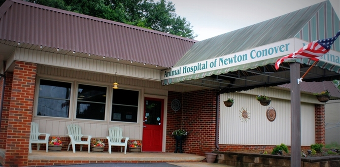 Animal hospital newton conover North carolina