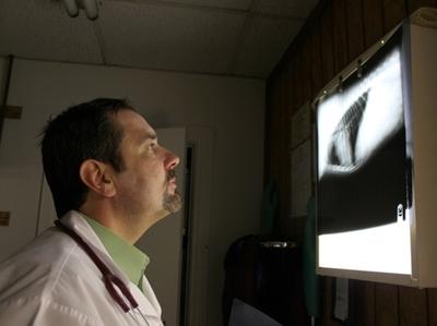 Radiology (X-Ray)