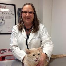 Dr Tammy Stone