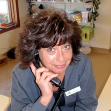 Julie Ellison - Receptionist
