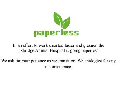 Paperless!