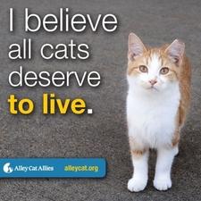 Deserve to live.