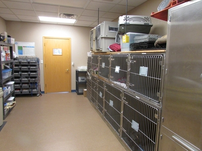 Kennel/Recovery Ward