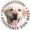 https://assistancedogsinternational.org/