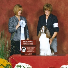 Mary & Caddy Win at the Dog Shows
