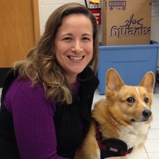 Amy Beamer corgi dog