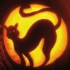 cat pumpkin halloween