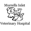 animal hospital veterinarian dog cat surgery exam