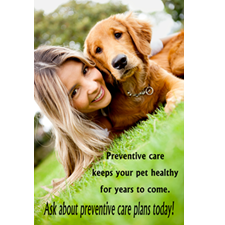 wellness plan monthly payment veterinary care dog