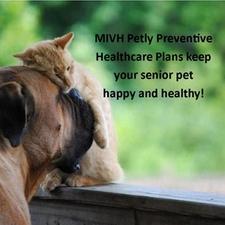 wellness plan veterinary care dog cat monthly pmt
