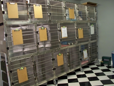 Kennel Facility