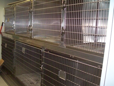 cages for boarding animals