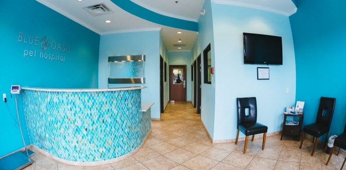 Blue Oasis Pet Hospital in Mount Juliet TN