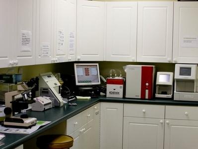 Laboratory and Pharmacy