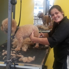 groomer with dog