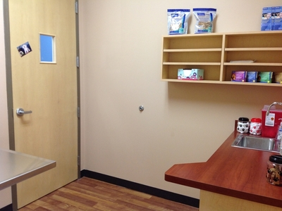 exam room in veterinary clinic