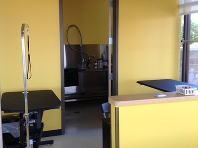 Grooming salon in veterinary clinic