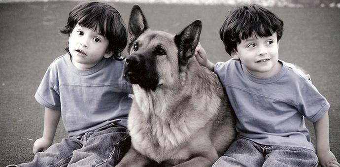 little boys with dog
