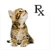 online pharmacy, medications, pets, dogs, cats