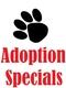 adoption specials
