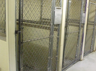 Indoor Kennels