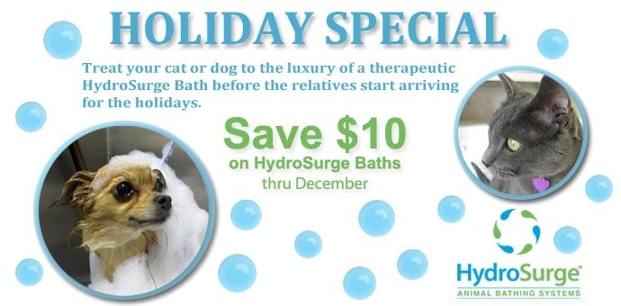 HydroSurge Bathing Special