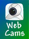 webcams for doggie daycare to watch your dogs play