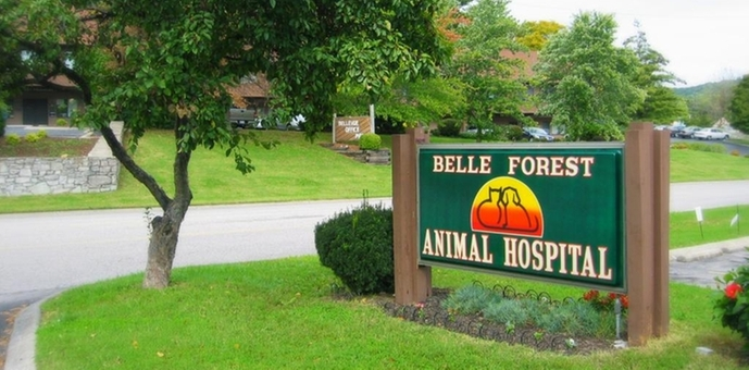 Belle Forest Animal Hospital