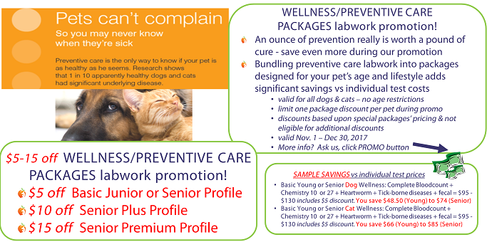 senior,bloodwork,promo,special,discount,wellness
