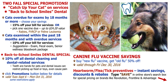 specials,coupons,savings,cats,dogs,dental,exam,vax
