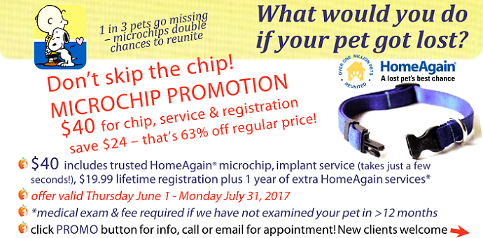 microchip,lost pet,homeagain,promo,special,coupon