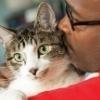 bloodwork,kidney,cats,dogs,kidney failure,SDMA,pet
