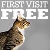 First Visit Free