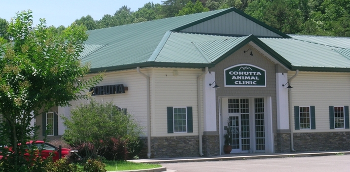 cohutta animal clinic