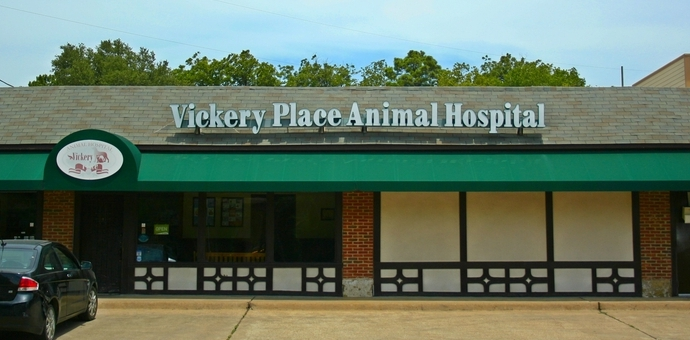 Vickery Place Dallas 75206 Veterinarian
