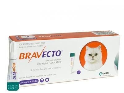 Feline Bravecto