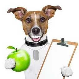 Dog holding apple and clipboard