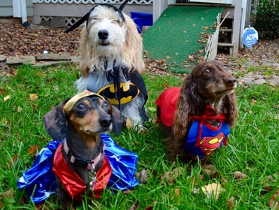 Superheros Ready for Action