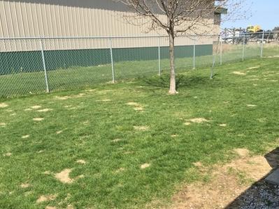Outdoor Walking Area