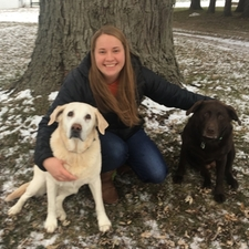 Grace and dogs, assistant zeeland vet