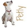 Petly Dog