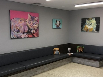 Waiting area - Cats