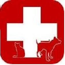emergency services red cross
