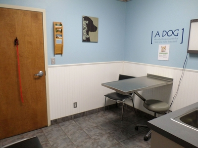 Dog Exam Room