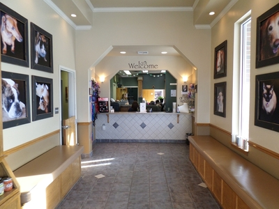 waiting room eastside veterinary hospital