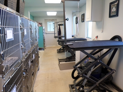 Eastside Vet Hospital grooming area