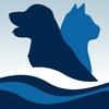 Animal Hospital Pet Vet Vaccine Spay Neuter Clinic